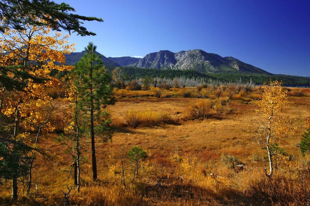 Things to do in the Fall in Lake Tahoe and Truckee